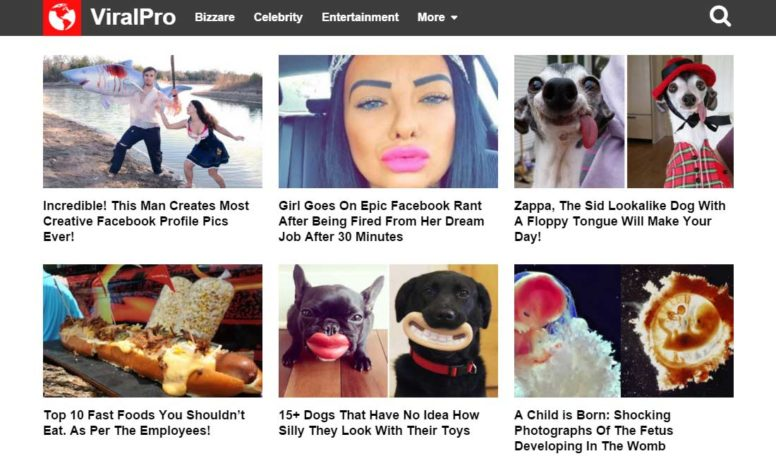 ViralPro Theme Review: Create A Viral Content Website With WordPress