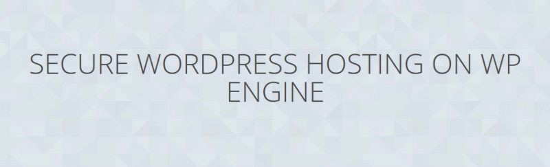 WP Engine Review-security