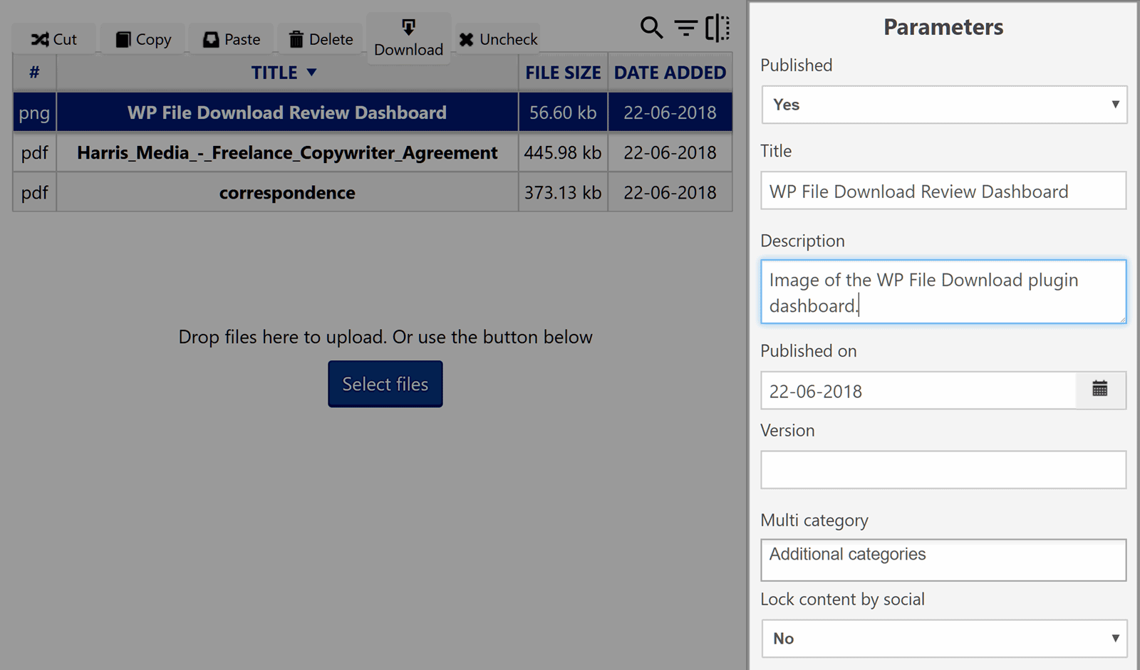File Parameters