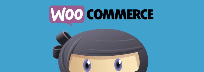 WooCommerce Add-on