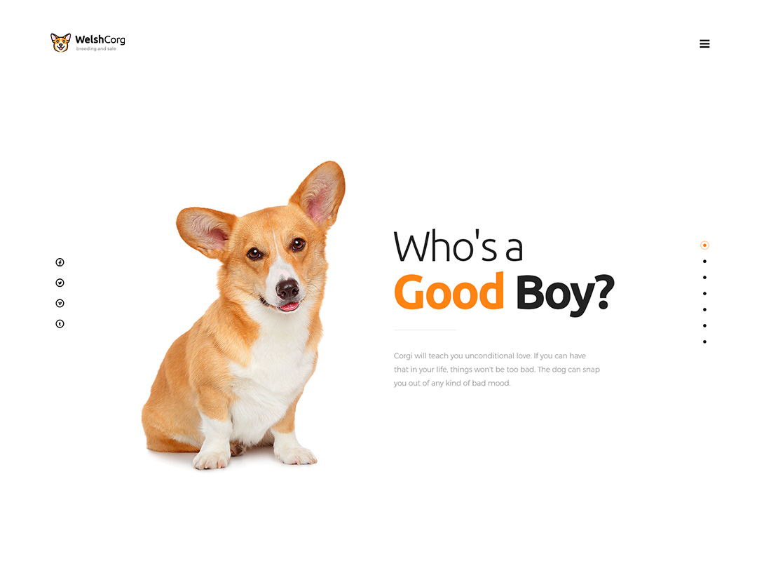 Welsh Corgi - Dog Breeding and Sale WordPress Theme