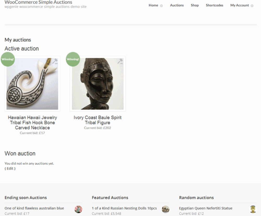 Simple WooCommerce Auction for Bidding