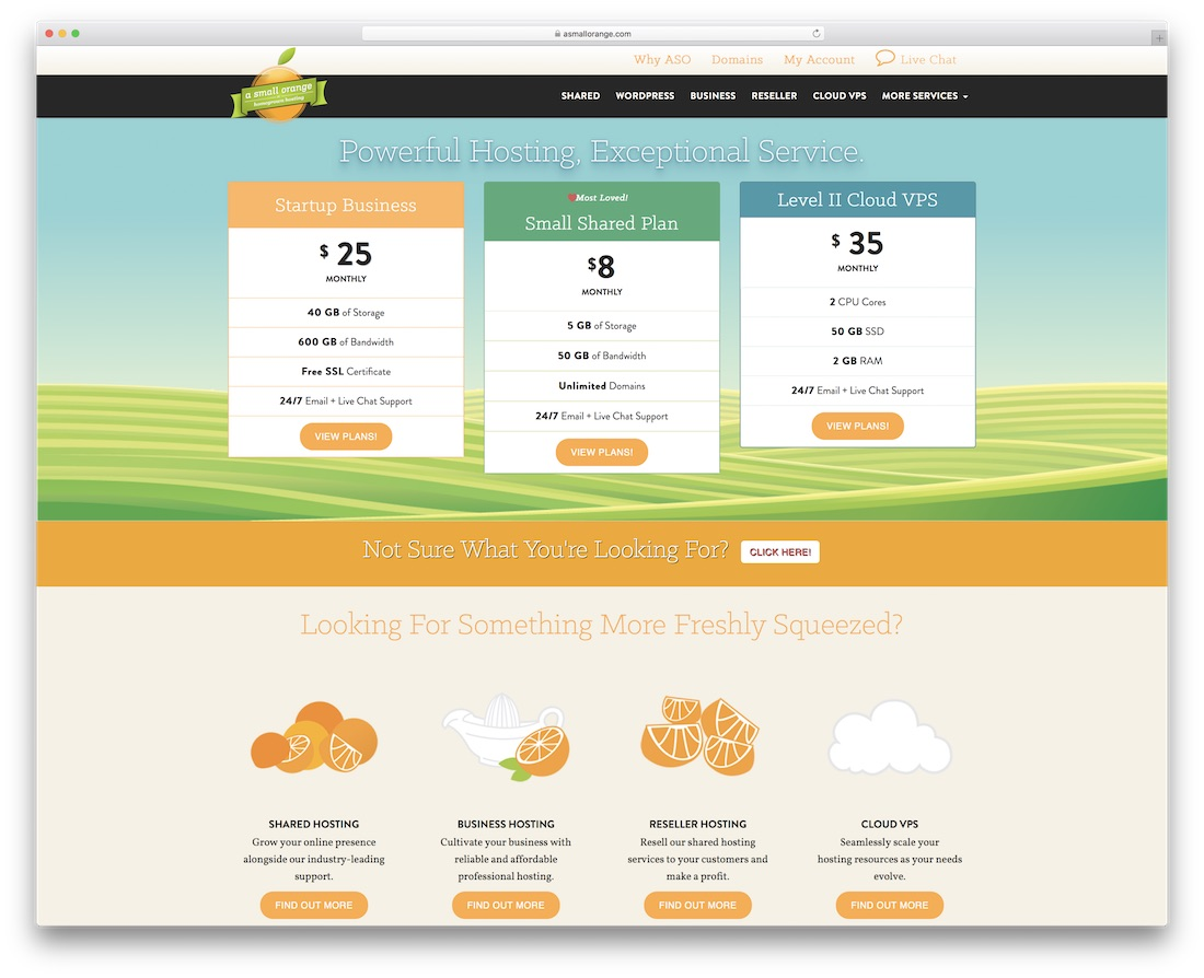 a small orange web hosting for personal website