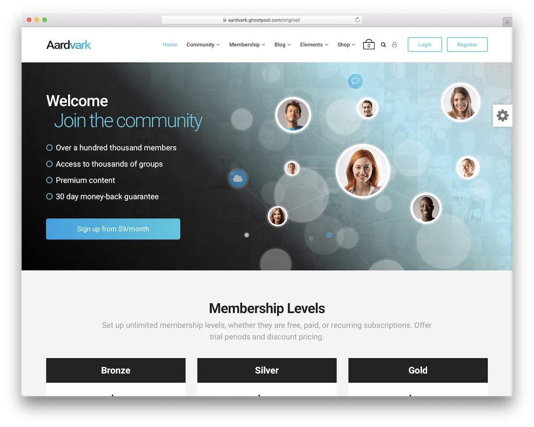 aardvark membership wordpress theme