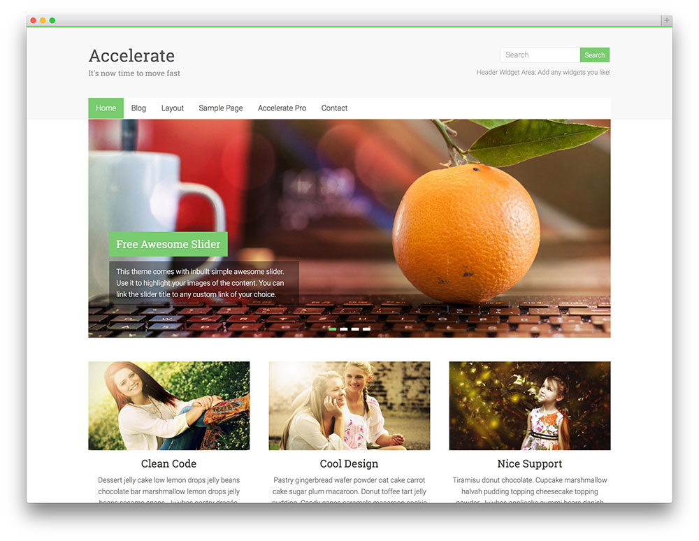 accelerate multipurpose WP theme