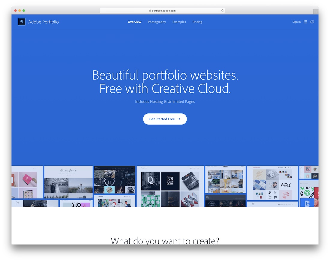 adobe portfolio artist website builder