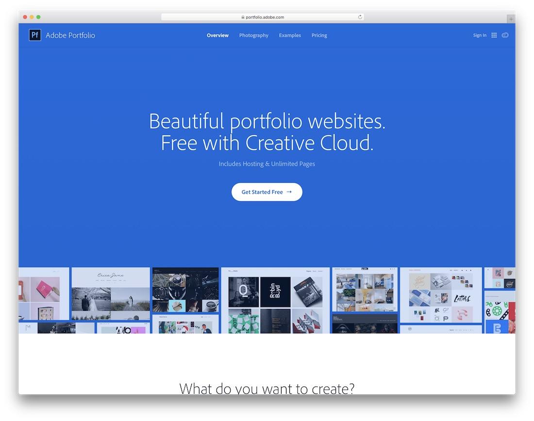 adobe portfolio website builder for artists