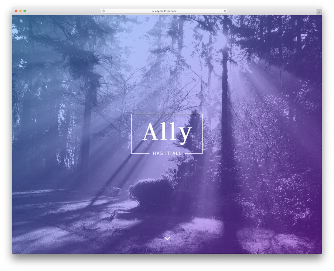 ally divi child theme