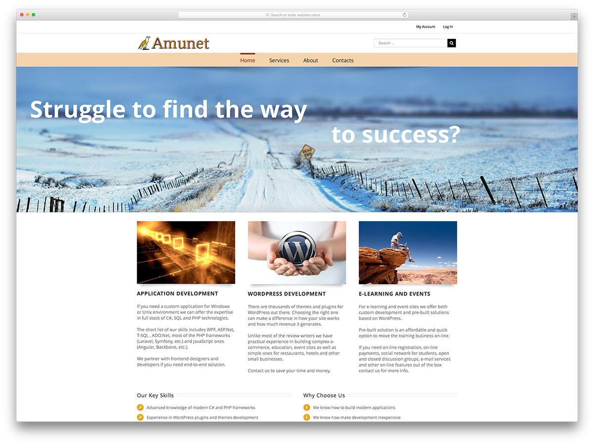 amunet-webdevelopment-agency