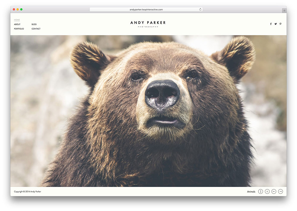 andy-parker-multipurpose-photography-gallery-theme