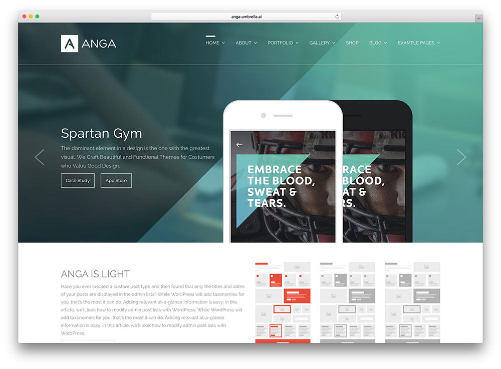 anga-creative-digital-agency-theme