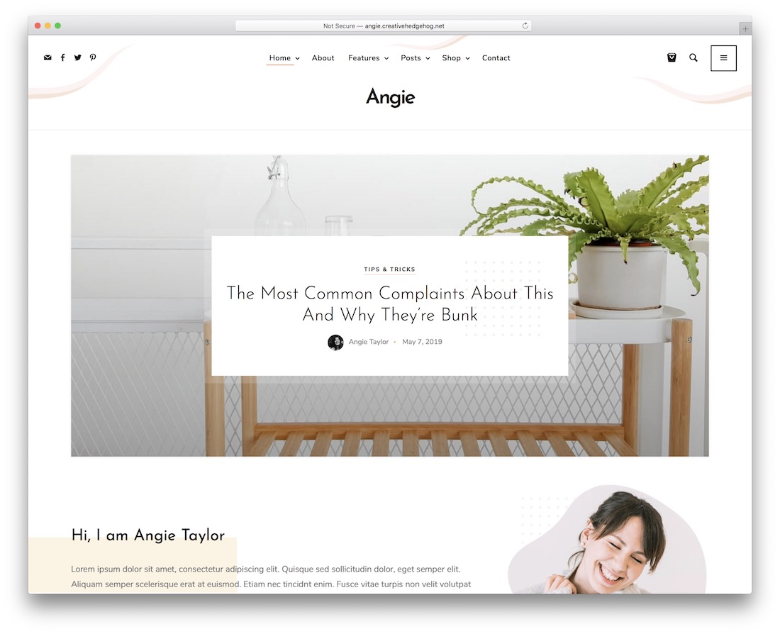angie viral wordpress theme