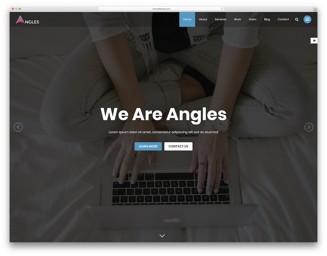 angles professional website template