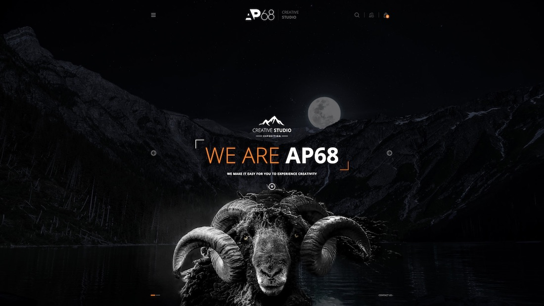 ap68 professional website template