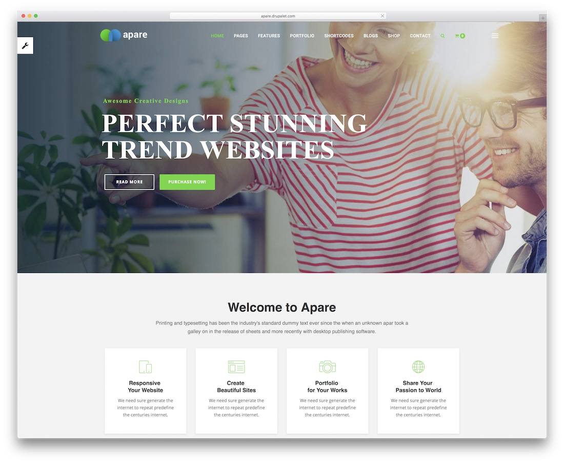 apare drupal business template