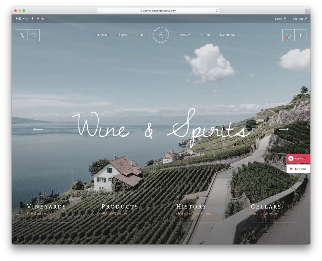 aperitif wine website template