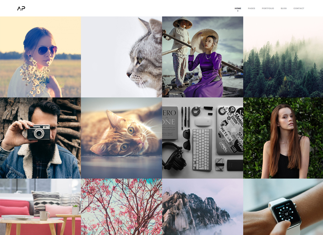 Apola - Photography Portfolio WordPress Theme