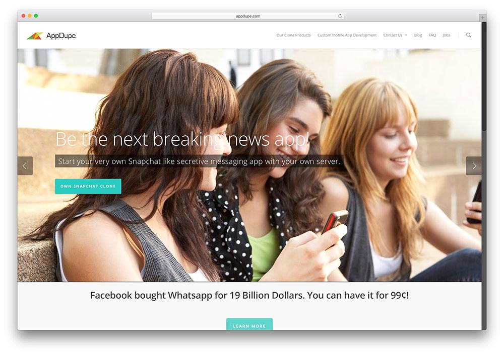 appdupe-non-profit-salient-theme-example