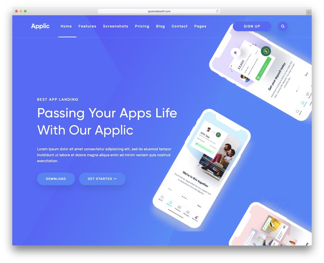 applic cheap website template