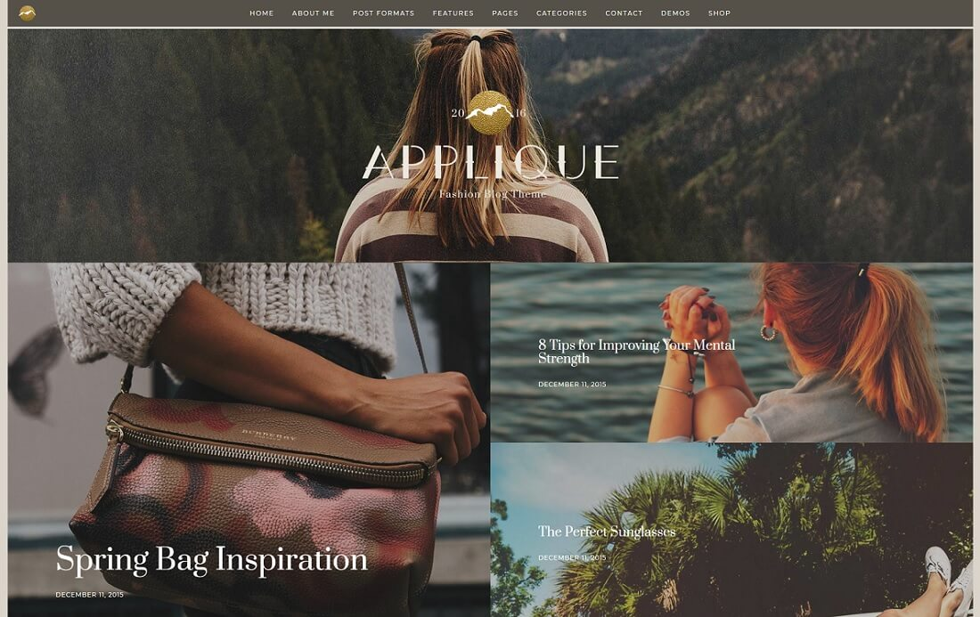 applique wordpress instagram theme