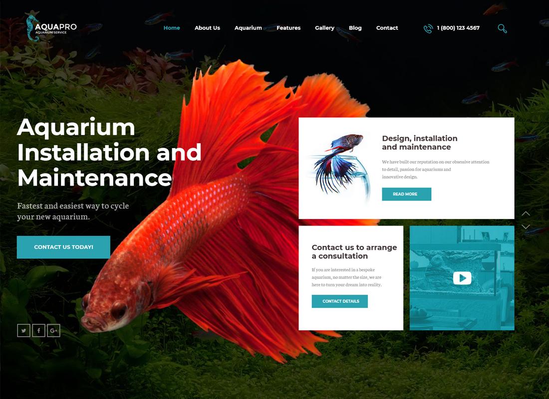 aquapro-aquarium-services-online-store