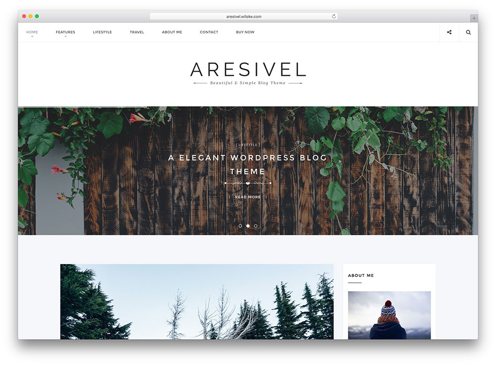 aresivel-creative-html5-blogging-theme