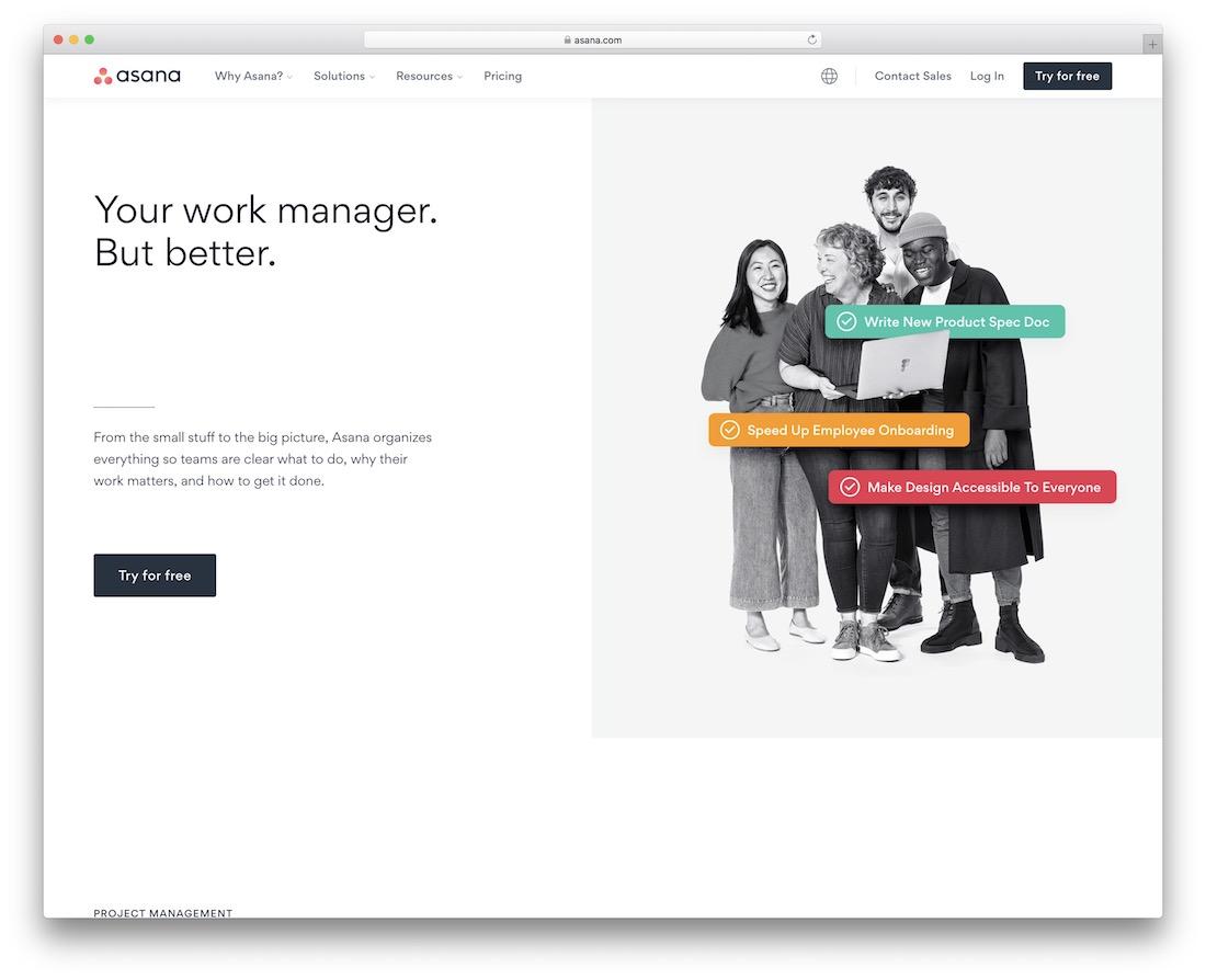 asana collaborative productivity tool