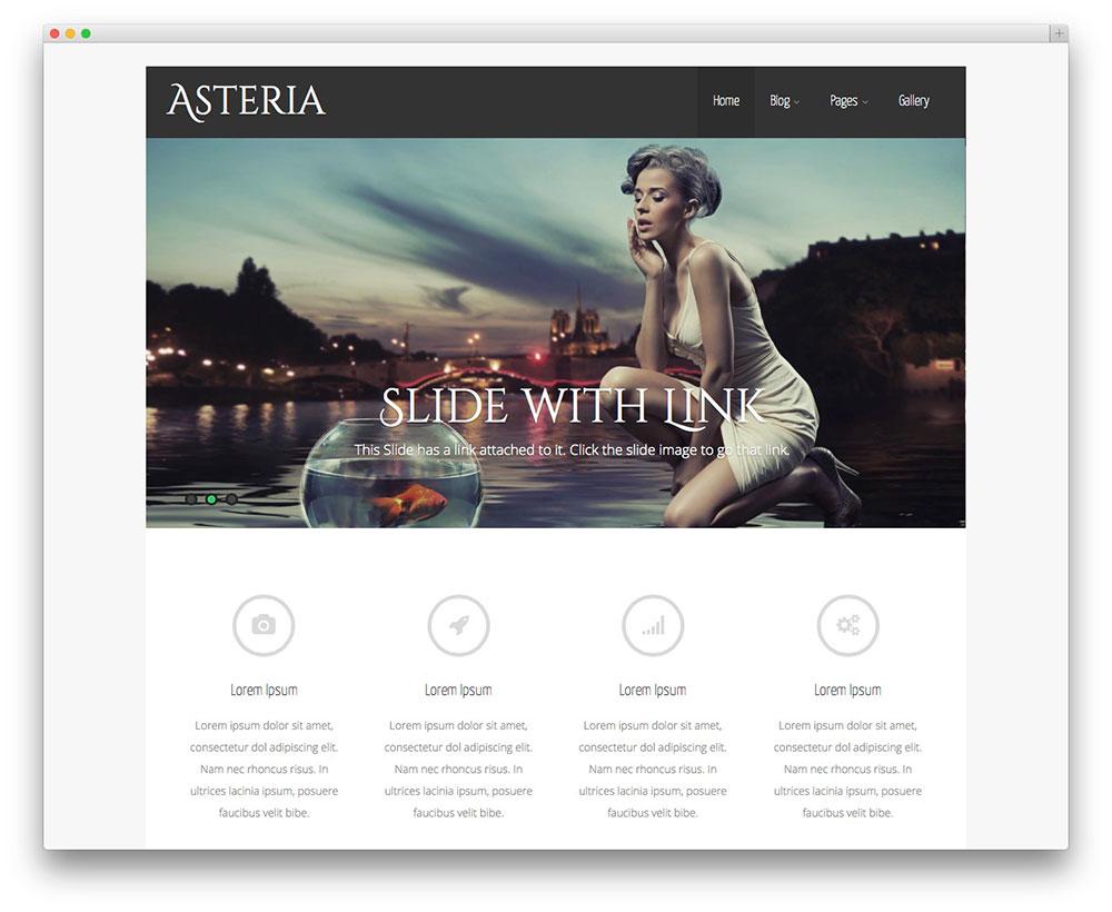 asteria - portfolio theme