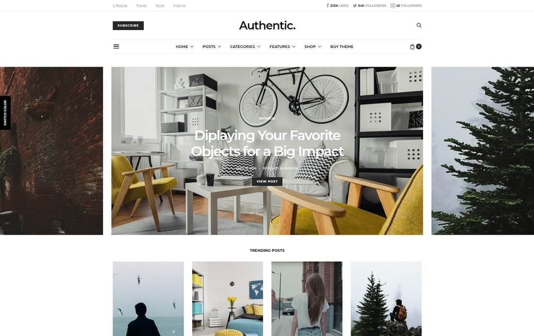 authentic wordpress instagram theme