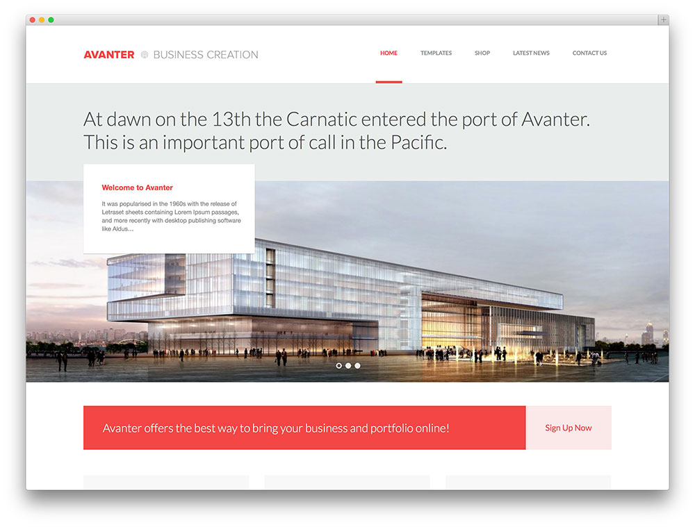 avanter minimal business portfolio