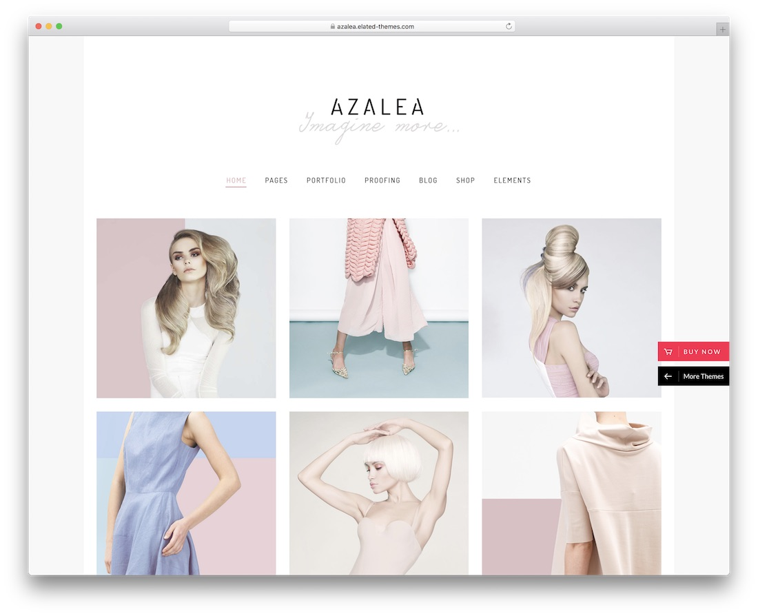 azalea photography wordpress theme