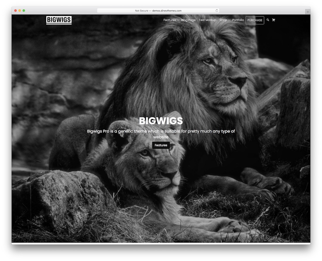 bigwigs free wordpress portfolio theme