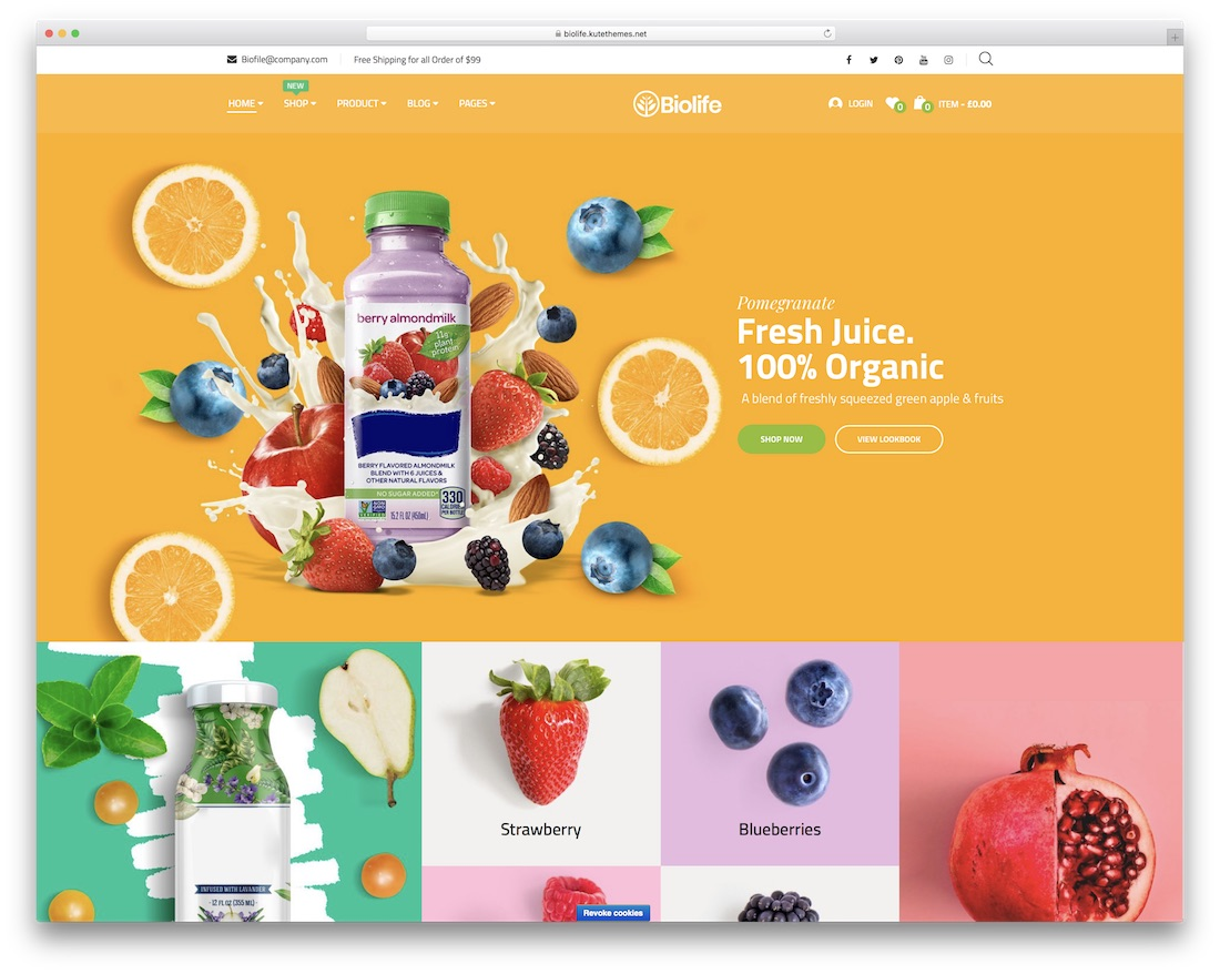 biolife flat design wordpress theme
