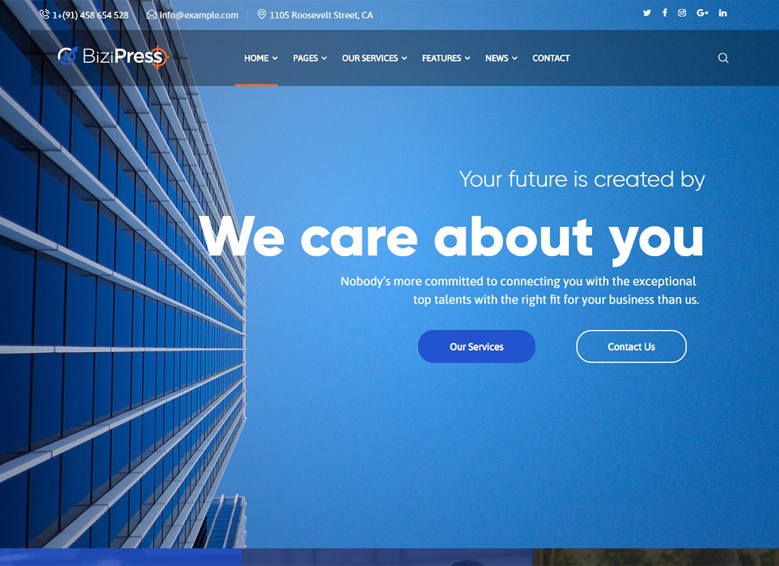 bizipress-finance-insurance-wordpress-theme