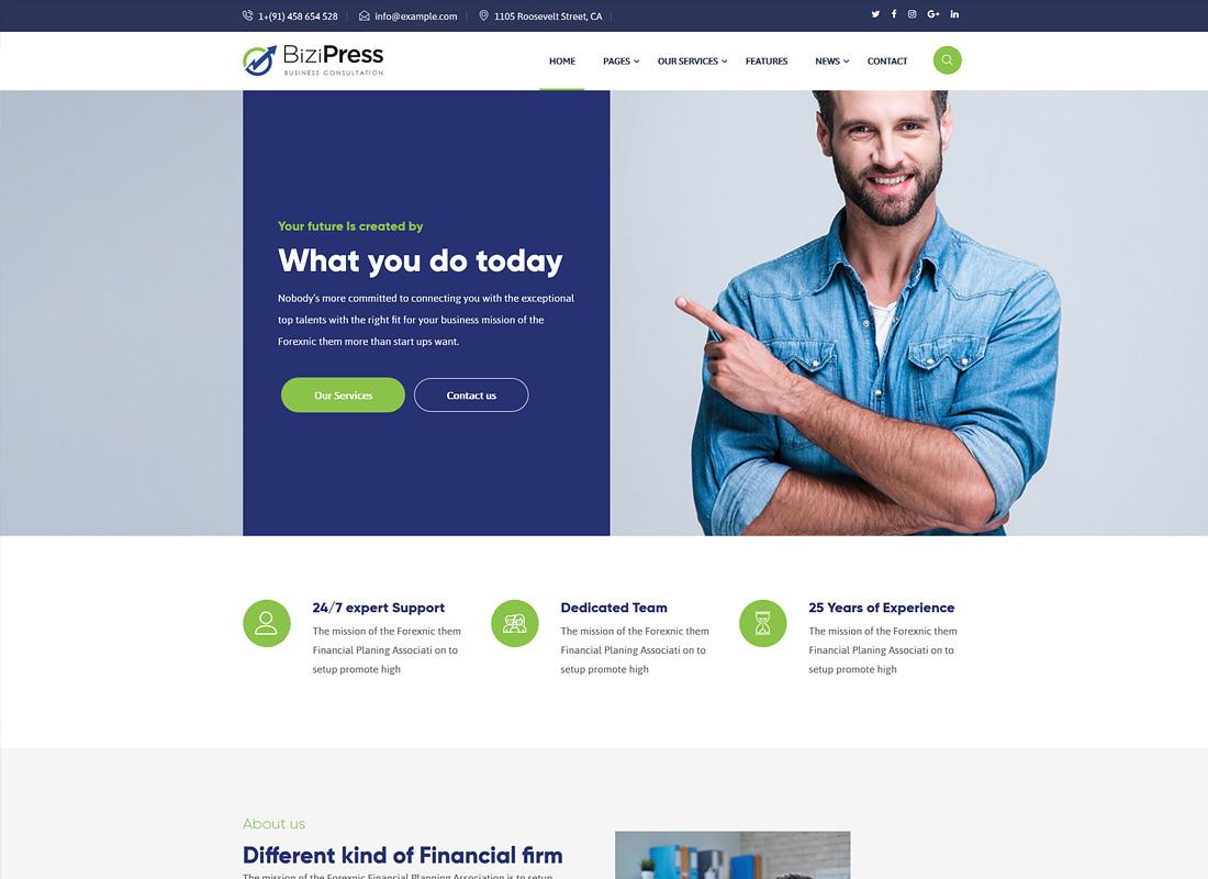 BiziPress | Finance Insurance Agency WordPress Theme