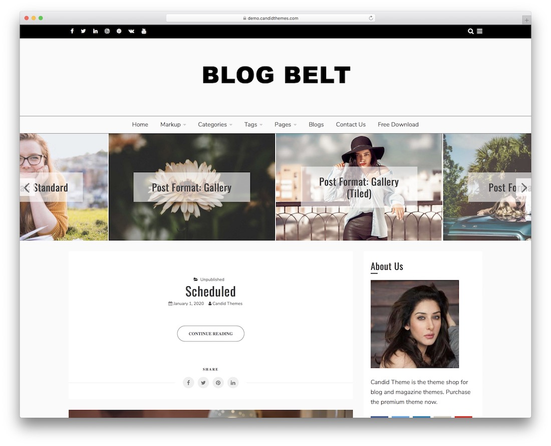blog belt free wordpress video theme