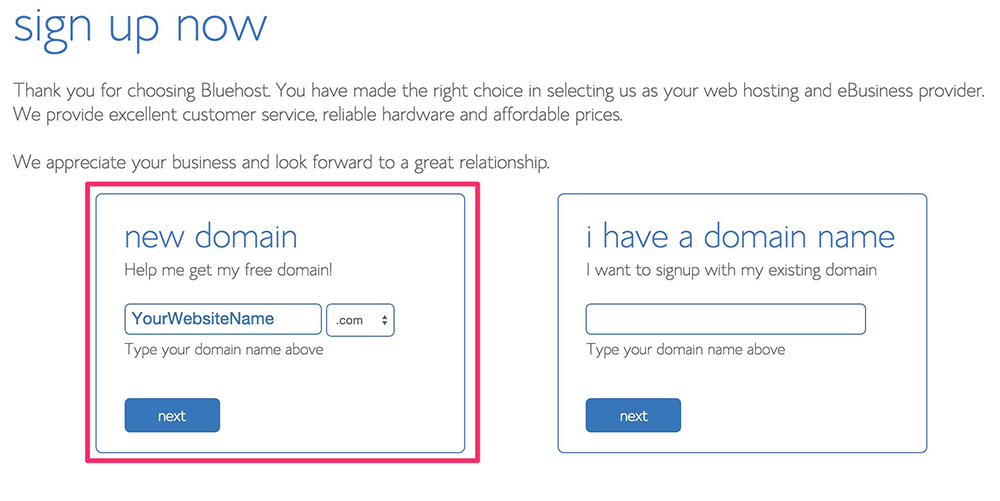 bluehost - choose your website name