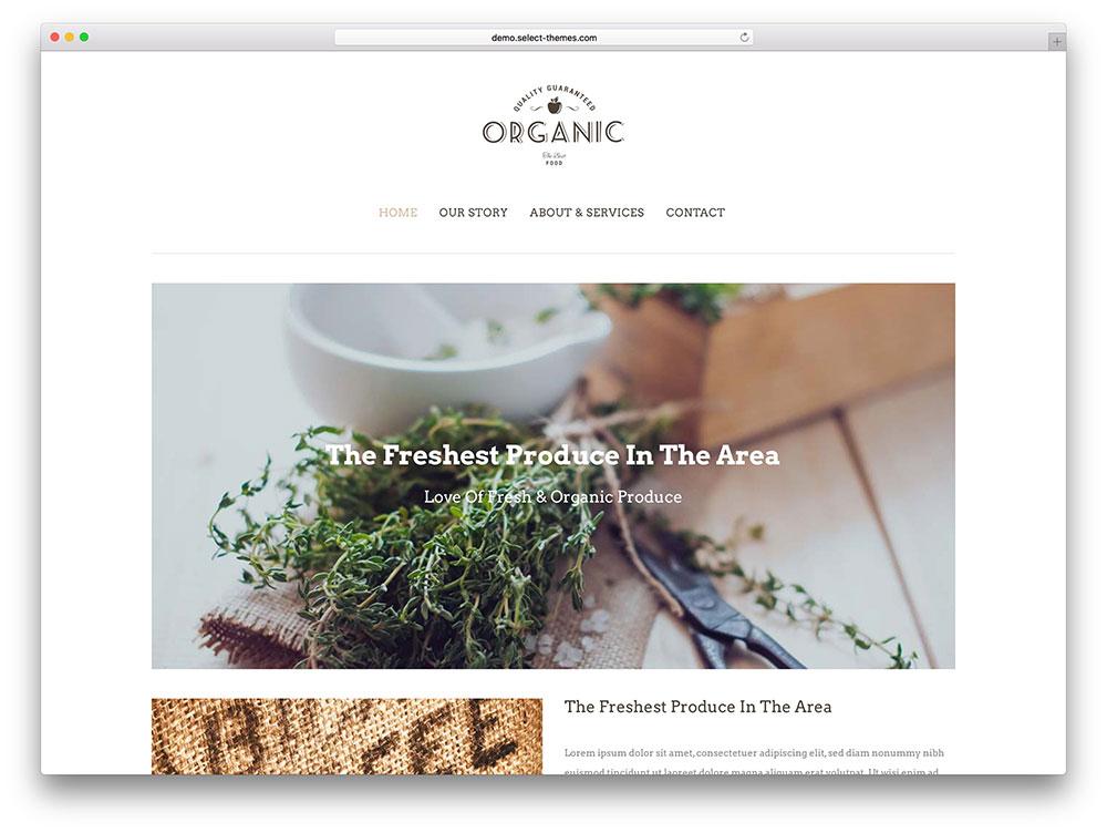 bodega - organic food store theme