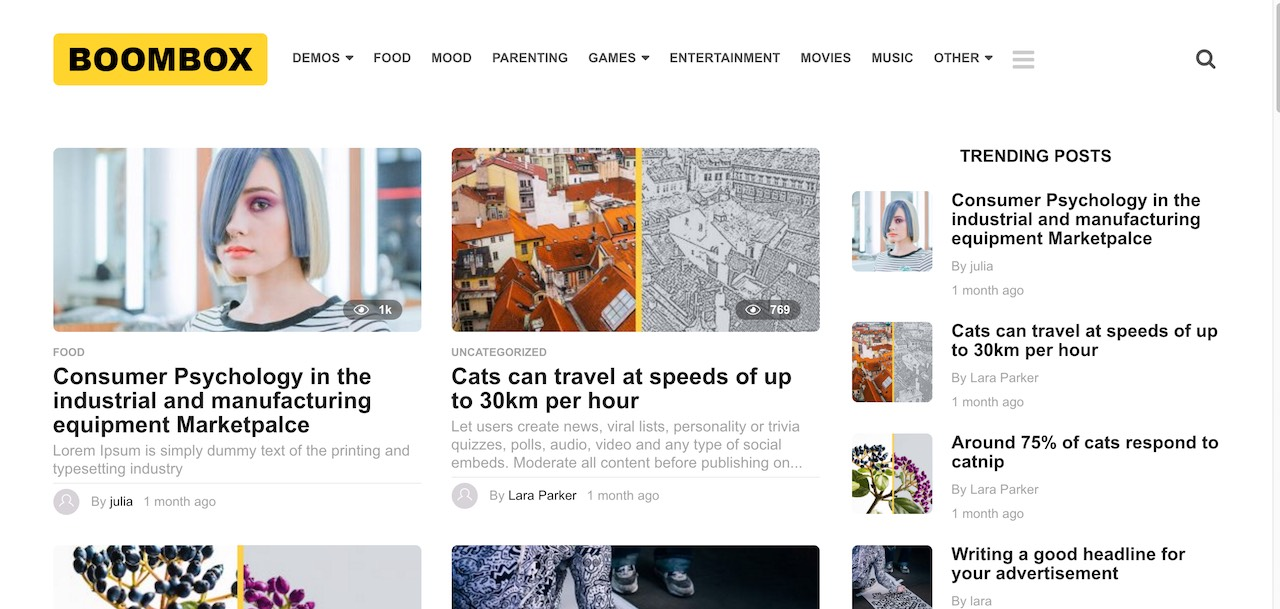 38 Best WordPress Themes With RTL Support 2019 - Colorlib