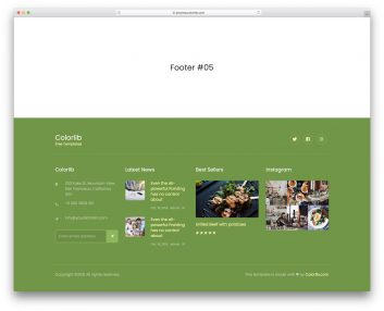 Bootstrap Footer 15