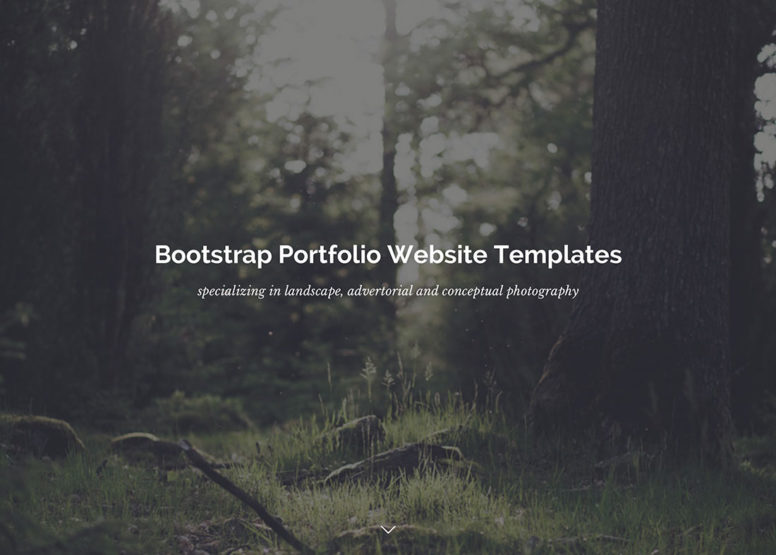 20 Best Bootstrap Portfolio Website Templates To Showcase Your Work [HTML & WordPress] 2017