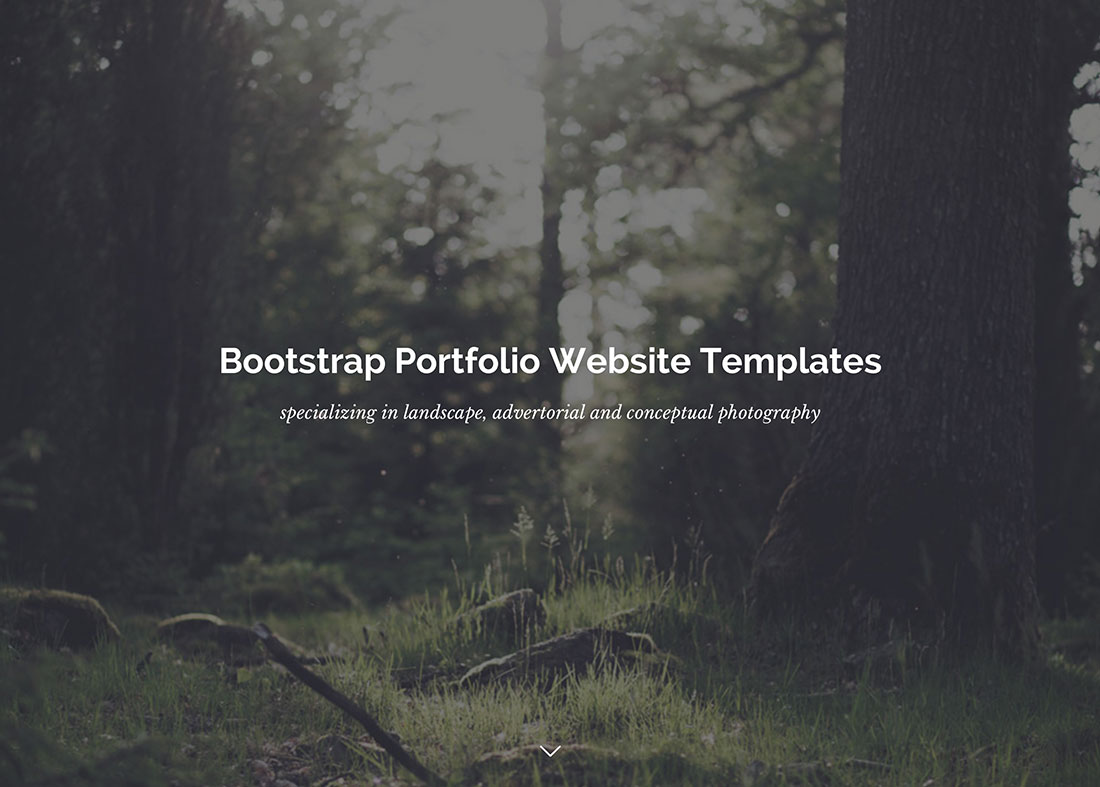 Bootstrap Portfolio Website Templates