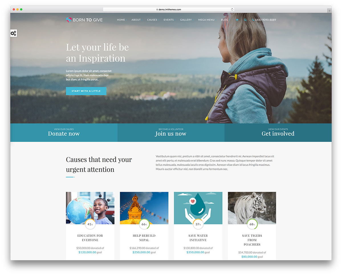 Image result for crowdfunding WordPress theme
