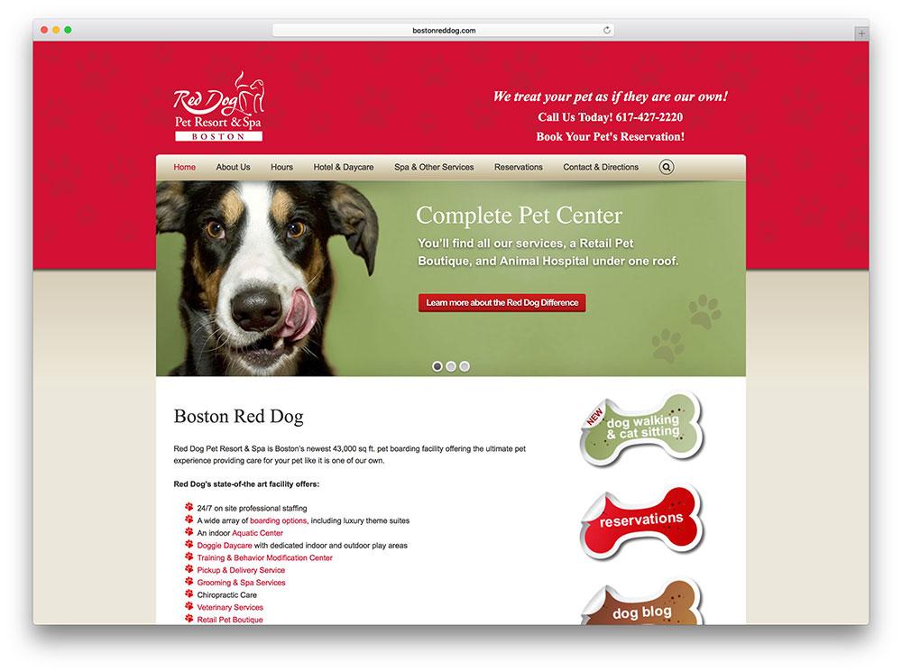 bostonreddog-dog-spa-based-on-avada