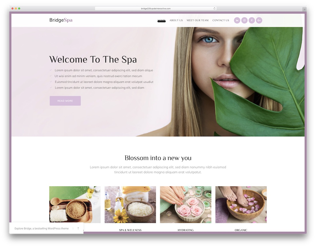 bridge best spa salon wordpress theme