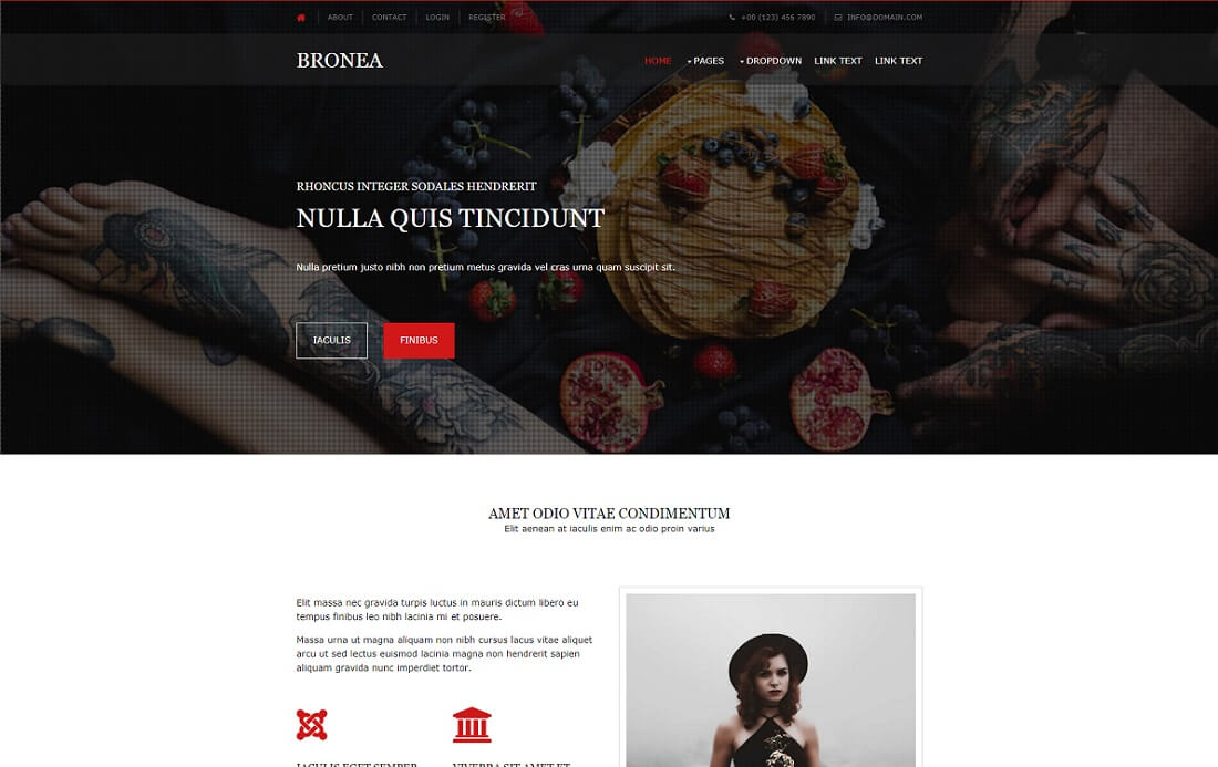 bronea free simple html template