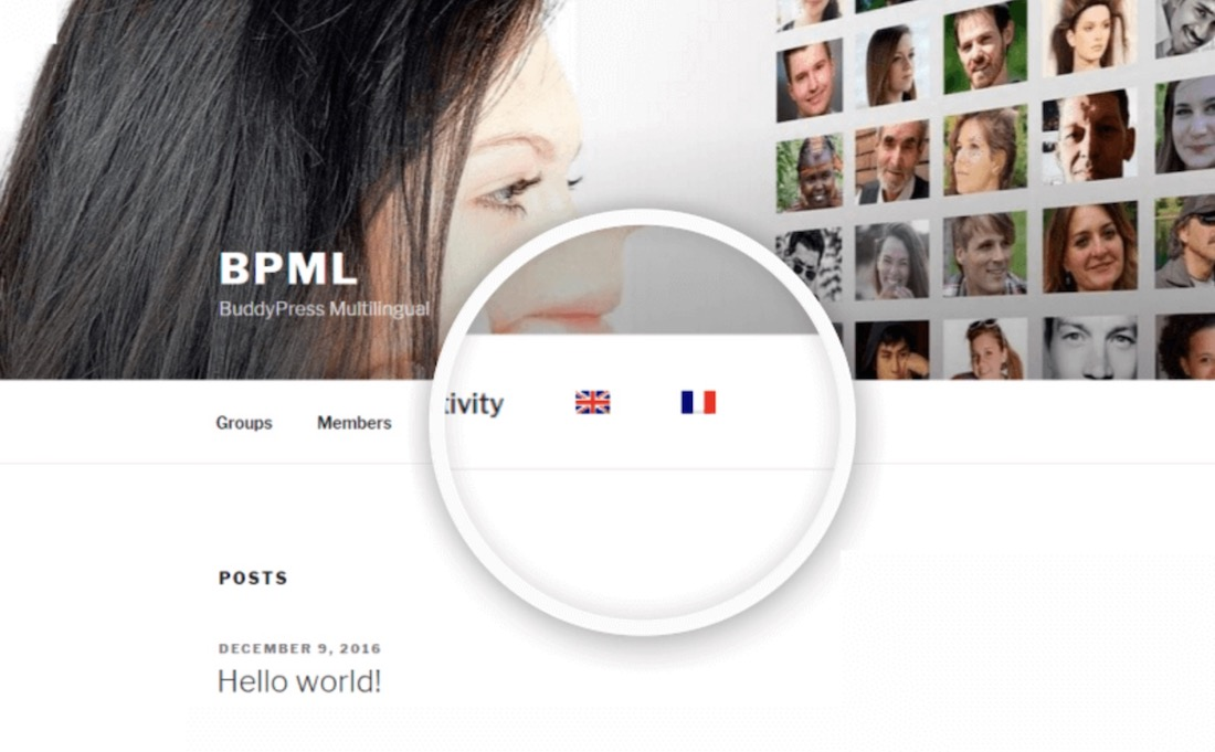 buddypress multilingual wordpress plugin