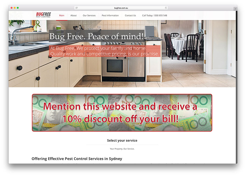 bugfree-pest-control-business-site-example-with-wordpress