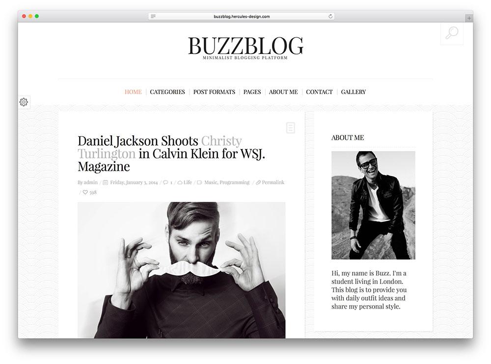 buzzblog - classic blog theme