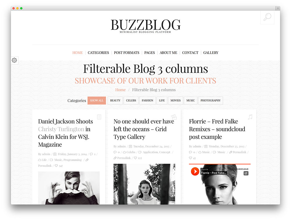 buzzblog blogging theme